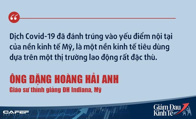 Kinh tế gia người Việt tại Mỹ: Việt Nam không nên kích cầu như các nước giàu! - Ảnh 2.