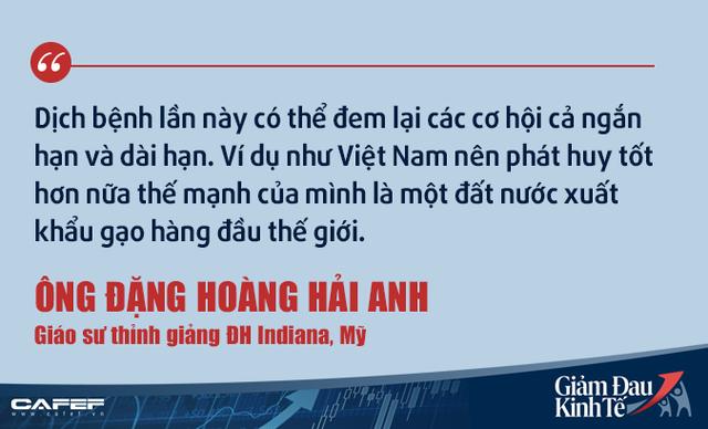 Kinh tế gia người Việt tại Mỹ: Việt Nam không nên kích cầu như các nước giàu! - Ảnh 8.