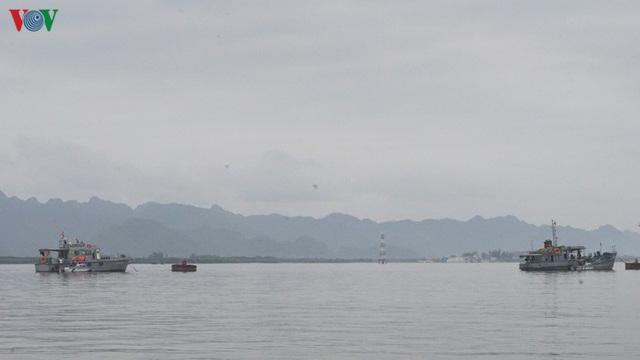 Cảng biển Hải Phòng duy trì hoạt động trong mùa dịch Covid-19 - Ảnh 7.