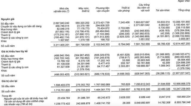HAGL Agrico khẳng định hoạt động đã tinh gọn sau khi lỗ 2.400 tỷ năm trước, dự kiến 2020 lãi 556 tỷ đồng - Ảnh 2.