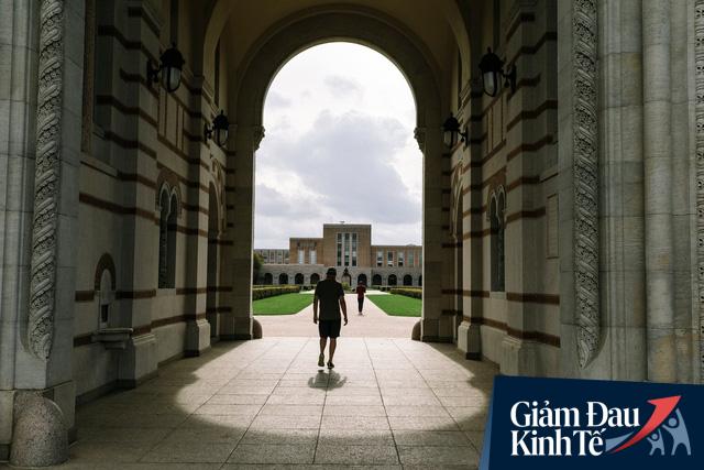 Mỹ: Từ Ivy League cho đến các trường đại học công cùng chung một nỗi lo - sinh viên sẽ không quay trở lại sau khi đại dịch kết thúc - Ảnh 1.