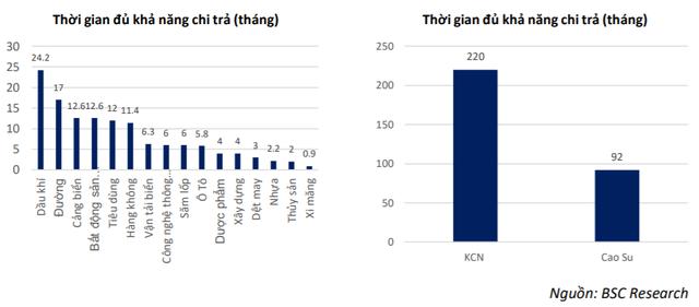 Nhóm Khu công nghiệp, cao su có khả năng trụ vững tốt nhất thị trường nếu dịch Covid-19 kéo dài - Ảnh 2.