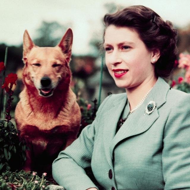 Nữ hoàng Elizabeth II: Từ công chúa sinh ra trong nhung lụa trở thành người phụ nữ quyền lực truyền cảm hứng cho hàng triệu trái tim - Ảnh 19.