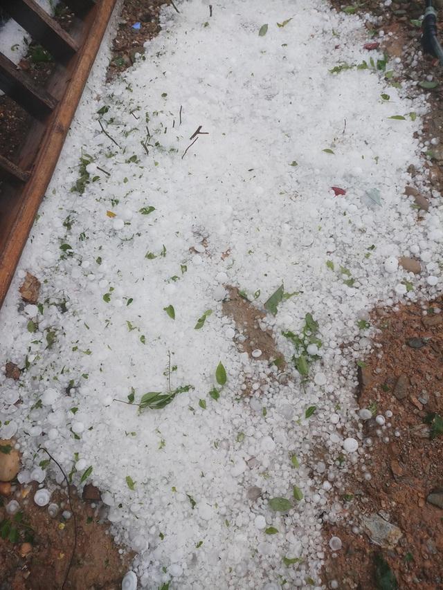Mưa đá to bằng quả trứng, quả xoài ở Nghệ An khiến hàng trăm mái nhà thủng tan hoang - Ảnh 11.