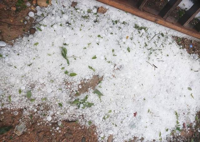 Mưa đá to bằng quả trứng, quả xoài ở Nghệ An khiến hàng trăm mái nhà thủng tan hoang - Ảnh 12.