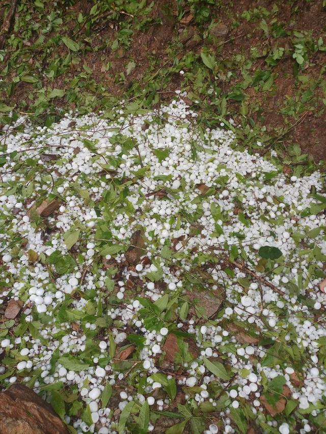 Mưa đá to bằng quả trứng, quả xoài ở Nghệ An khiến hàng trăm mái nhà thủng tan hoang - Ảnh 6.