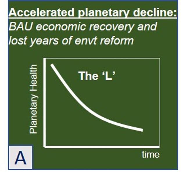 Forbes: Sai lầm lớn mà các nhà kinh tế đang mắc phải khi xây dựng mô hình phục hồi hậu Covid-19 - Ảnh 5.