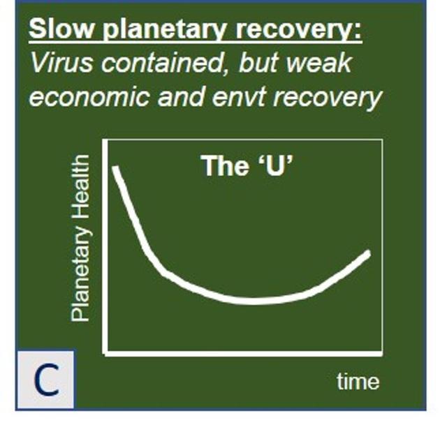 Forbes: Sai lầm lớn mà các nhà kinh tế đang mắc phải khi xây dựng mô hình phục hồi hậu Covid-19 - Ảnh 7.