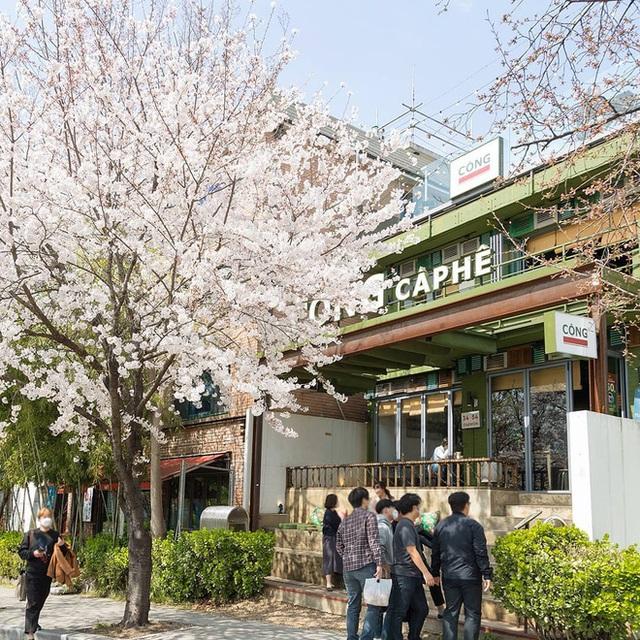 Tự hào khôn xiết với 3 thương hiệu đồ ăn uống Việt Nam đã xuất ngoại thành công, khách nước ngoài xếp hàng mua nườm nượp - Ảnh 17.