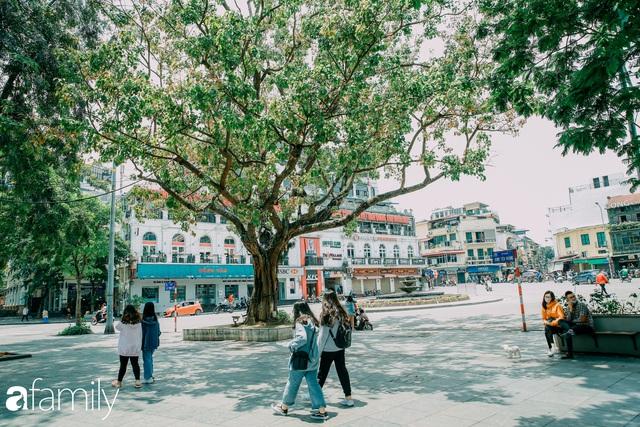 Hồ Hoàn Kiếm ngày cuối tuần bình yên, cuộc sống chậm lại khiến cho nhiều người chợt nhận ra nơi đây có nhiều thứ đẹp mà ngày thường chẳng hề hay biết - Ảnh 2.