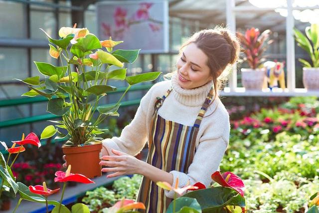5 lợi ích sức khỏe vô giá khi trồng cây trong nhà: Muốn khỏe mạnh hãy sớm dựa vào cây! - Ảnh 6.