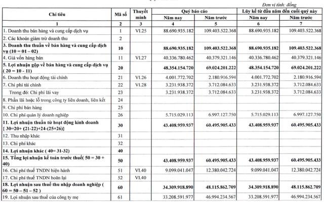 Thủy điện Thác Mơ (TMP) báo lãi sau thuế 34 tỷ đồng quý 1, giảm gần 29% so với cùng kỳ - Ảnh 1.