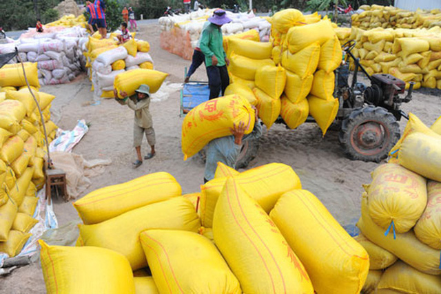Bộ Công Thương kiến nghị xuất khẩu gạo trở lại bình thường từ 1-5 - Ảnh 1.