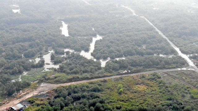 Bên trong siêu dự án 6 tỷ đô nằm bất động giữa Sài Gòn - Ảnh 13.