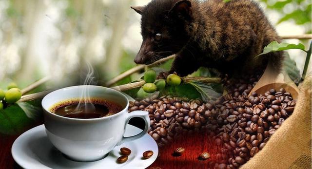 5 món cafe kỳ lạ nhất hành tinh không phải coffeeholic nào cũng biết đến, trong đó có tới 4 loại xuất hiện tại Việt Nam - Ảnh 7.