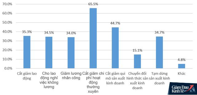 Ngủ đông, giảm lương, chuyển đổi mô hình... , đâu là giải pháp được nhiều doanh nghiệp Việt lựa chọn nhất giữa đại dịch Covid-19? - Ảnh 1.