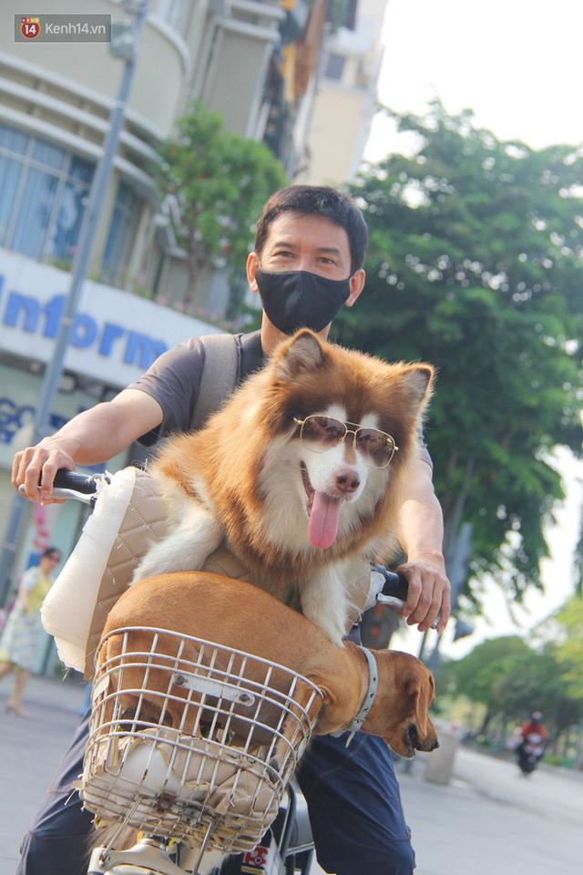 Ảnh: Ngắm một Sài Gòn yên bình trong sáng 30/4, mọi tuyến đường, góc phố phấp phới cờ hoa - Ảnh 6.
