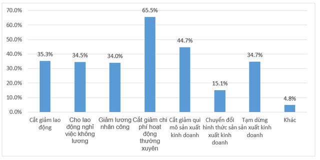 Nếu dịch Covid-19 kéo dài hết tháng 6, chỉ còn 15% DN duy trì hoạt động - Ảnh 2.