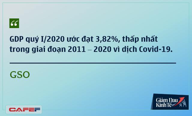 Các chuyên gia kinh tế nói gì về kinh tế Việt Nam thời dịch Covid-19? - Ảnh 2.