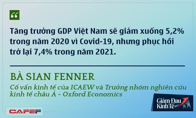 Các chuyên gia kinh tế nói gì về kinh tế Việt Nam thời dịch Covid-19? - Ảnh 13.