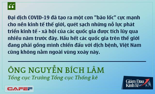 Các chuyên gia kinh tế nói gì về kinh tế Việt Nam thời dịch Covid-19? - Ảnh 3.