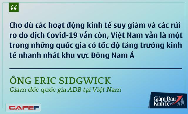 Các chuyên gia kinh tế nói gì về kinh tế Việt Nam thời dịch Covid-19? - Ảnh 7.