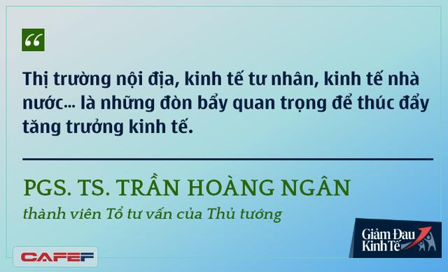 Các chuyên gia kinh tế nói gì về kinh tế Việt Nam thời dịch Covid-19? - Ảnh 8.