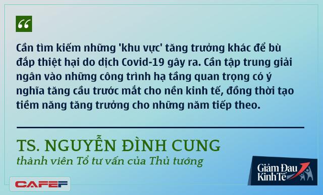 Các chuyên gia kinh tế nói gì về kinh tế Việt Nam thời dịch Covid-19? - Ảnh 9.