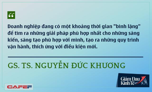 Các chuyên gia kinh tế nói gì về kinh tế Việt Nam thời dịch Covid-19? - Ảnh 10.