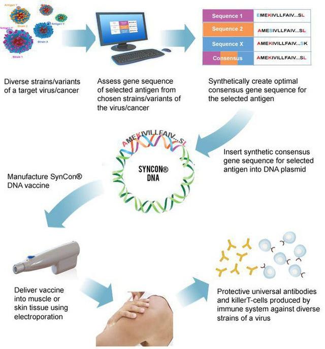 Một trong 7 loại vắc-xin COVID-19 nhận tài trợ từ Bill Gates sẽ được thử nghiệm lâm sàng trên người đầu tiên trong hôm nay - Ảnh 3.