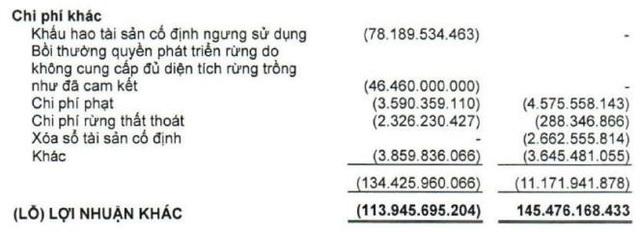 Hậu kiểm toán, lợi nhuận 2019 của HDG, VGT và TTF chênh lệch hàng chục tỷ đồng - Ảnh 2.