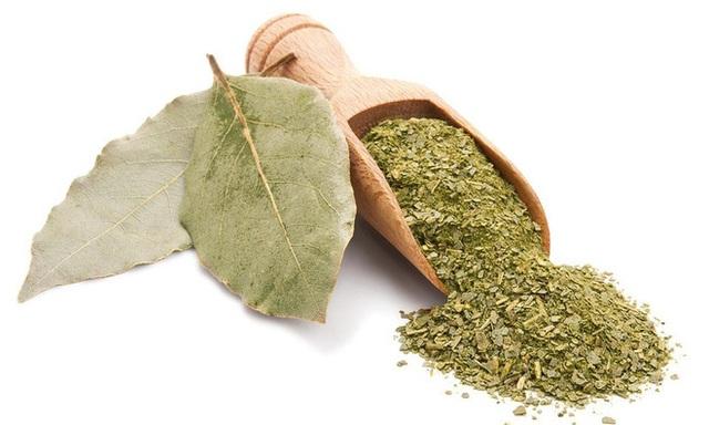 Trồng một cây nguyệt quế bên hiên nhà: Riêng lá cây đã có 8 lợi ích đáng nể cho sức khỏe - Ảnh 3.