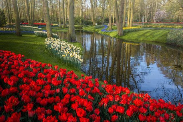 Thiên đường hoa đẹp nhất thế giới không bóng người vì dịch Covid-19 - Ảnh 9.