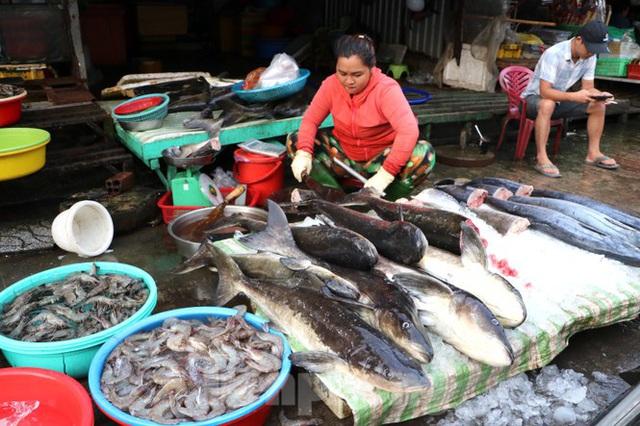 Chợ lớn nhất Phú Quốc nhộn nhịp sau giãn cách xã hội - Ảnh 7.  Chợ lớn nhất Phú Quốc nhộn nhịp sau giãn cách xã hội photo 6 1589121864619163609895