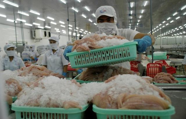 Chế biến cá tra xuất khẩu. Ảnh: Cảnh Kỳ