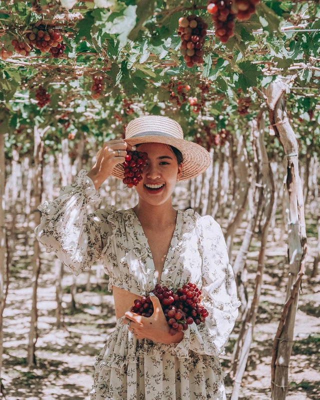 12 tháng đi hết Việt Nam: Bản đồ du lịch hoàn hảo dành cho những ai ngứa chân lắm rồi nhưng chưa biết đi đâu! - Ảnh 6.