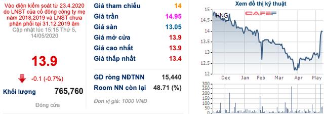 HAGL Agrico (HNG): Cổ phiếu vừa lọt rổ MSCI Frontier Markets Smallcap Indexes, Thaco muốn tăng sở hữu lên gần 29% vốn - Ảnh 1.