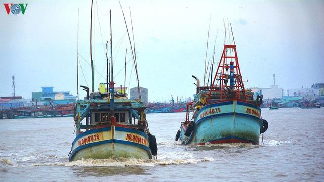 Gỡ khó cho khai thác, chế biến và tiêu thụ hải sản - Ảnh 1.