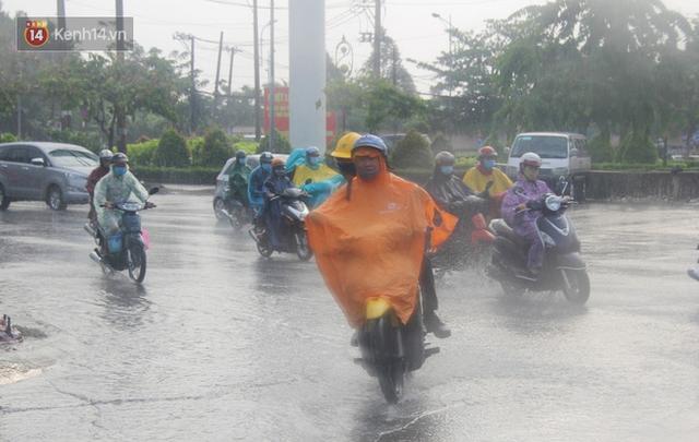 Ảnh: Cơn mưa vàng xối xả giải nhiệt cho Sài Gòn từ sáng sớm, chấm dứt chuỗi ngày nắng nóng kinh hoàng - Ảnh 6.