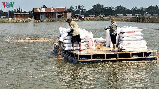 Tín hiệu đáng mừng trong xuất khẩu cá tra thời hậu Covid-19 - Ảnh 1.