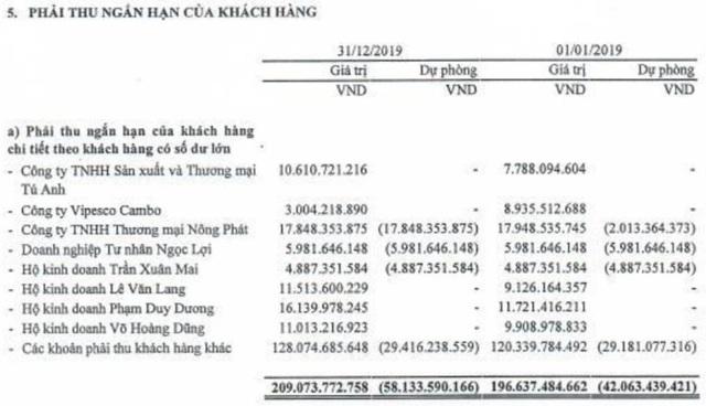 Vipesco (VPS): Kiểm toán điều chỉnh giảm mạnh chỉ tiêu lợi nhuận 2019 đã được kiểm toán - Ảnh 1.