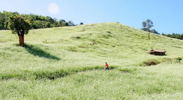 Khám phá lịch trình du lịch Việt Nam từ giờ đến cuối năm, các chị em hãy đi ngay để biết nước mình đẹp thế nào! - Ảnh 26.