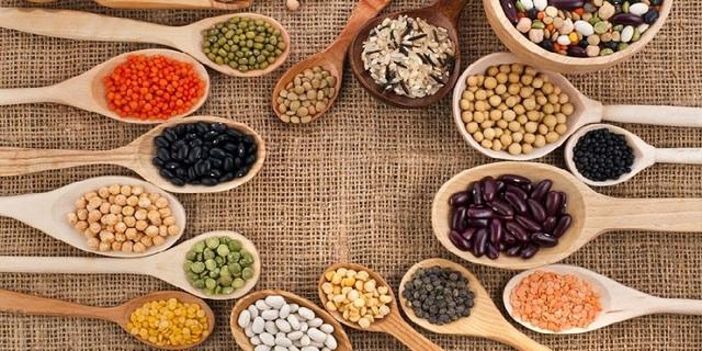 Sử dụng protein thực vật hoặc các sản phẩm chế biến từ sữa thay thế thịt đỏ liệu có giúp chúng ta sống lâu hơn? Đây là giải đáp của các nhà khoa học - Ảnh 1.