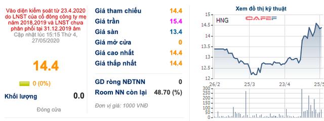 HAGL Agrico (HNG): Nhóm Thaco đã sở hữu hơn 37% vốn - Ảnh 1.