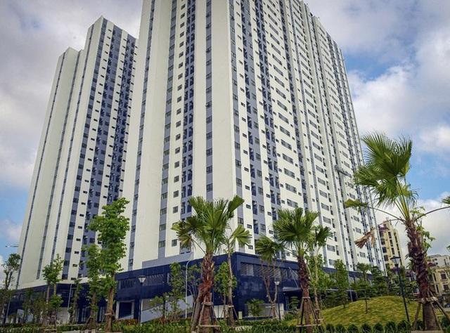 Vụ đổi 99ha 'đất vàng' cải tạo chung cư: Yêu cầu Hải Phòng làm rõ ý kiến Bộ Tài chính - Ảnh 1.