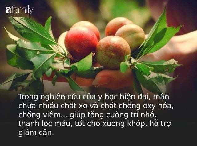 Mận là loại trái cây cực tốt nhưng có những người tốt nhất không nên ăn, đặc biệt là 5 đối tượng này - Ảnh 1.