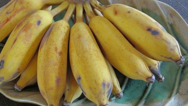Phụ nữ chăm chỉ ăn 10 loại quả này có thể kích thích cơ thể tự sản sinh collagen, loại bỏ nếp nhăn trên khuôn mặt và khỏe mạnh mỗi ngày - Ảnh 5.