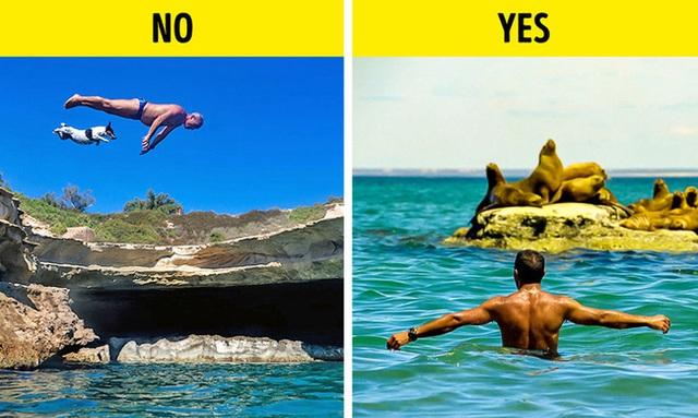 Dành cho những người thích bơi lội: Đọc ngay để biết chỗ nào không nên bơi, làm sao tránh nhiễm trùng, viêm tai sau khi bơi - Ảnh 1.