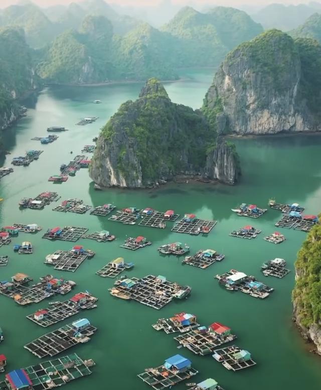 Leonardo DiCaprio chia sẻ hình ảnh vịnh Lan Hạ của Việt Nam trên Instagram, còn kêu gọi mọi người bảo vệ vẻ đẹp của nơi này - Ảnh 3.
