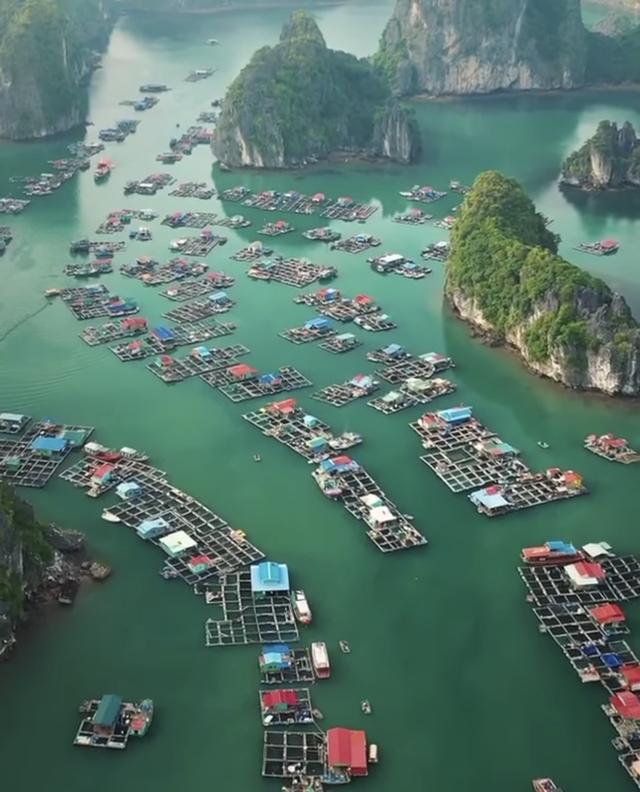 Leonardo DiCaprio chia sẻ hình ảnh vịnh Lan Hạ của Việt Nam trên Instagram, còn kêu gọi mọi người bảo vệ vẻ đẹp của nơi này - Ảnh 4.